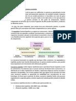 Genomas Procariotas vs Genomas Eucariotas