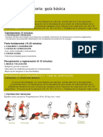guía básica PLATAFORMA.pdf