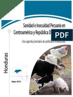 Informe Nacional - Honduras