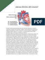 Cómo Es El Sistema Eléctrico Del Corazón