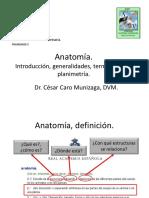 001-2014-CC-Anatomia, introduccion..pdf