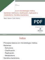 Principios Bacterias Genetica Bacteriana