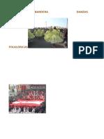 Procesión de La Bandera Danzas Folklóricas