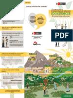 LEY MRSE Triptico PDF Digital
