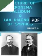 structureoft-pallidumlabdiagnosisofsyphilis-130218084030-phpapp01.pptx
