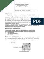 ANATOMiA_PROTETICA_DE_LA_SUPERFICIE_DE_ASIENTO (1).pdf