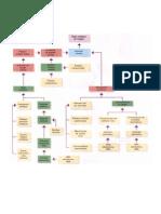 Tema 8_Sistema circulatorio