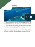 Pulau Nyang