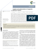 Aggregation and Sedimentation of Magnetite Nanoparticle Clusters