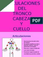 Articulaciones de Cabeza y Tronco