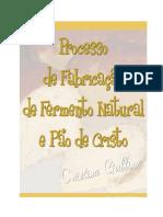 Fabricação de Fermento Natural e Pão de Cristo