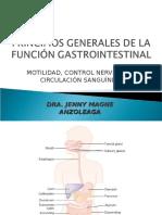 62. PRINCIPIOS GRALES DE FUNCION GASTROINTESTINAL. MOTILIDAD, CONTROL NERVIOSO Y CIRCULACION SANGUINEA.ppt