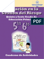 Gestion Riesgo 5y6
