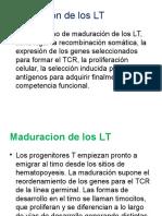 Maduration LT Clase