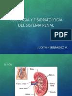 Fisiología y fisiopatología del sistema renal.pdf