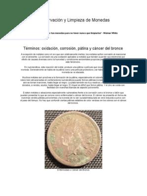 Protector Funda de Monedas Fuentes Moneda Mylar