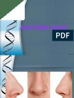 anatomanariz