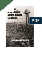Cien Años de La Primera Guerra Mundial - Los Inicios