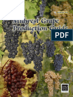 Grape Production Guide