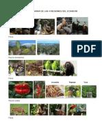Flora y Fauna de Las 4 Regiones Del Ecuador