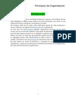 Informe de Principios de Organizacion