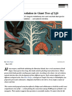 https___www.quantamagazine.pdf