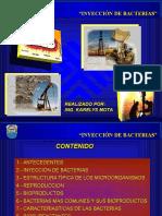 2 INYECCIÓN DE BACTERIAS.ppt