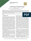 Cubical Homology in Digital Images
