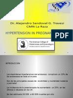 Hypertension in Pregnancy 2013