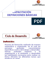 Consultoria Desempenio-Capacitacion (1)