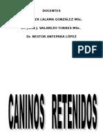 3.4 CANINO SUPERIOR RETENIDO.ppt