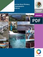 Subsector de APAyS Morelos 2011.pdf