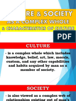CULTURE AND SOCIETY COMPLEX AND CHARACTERISTICS.pdf