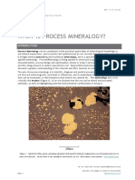 Process mineralogy.pdf