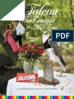 Skittles Brand Book