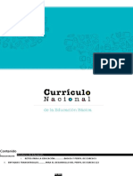 Curriculo Nacional 2017- Word