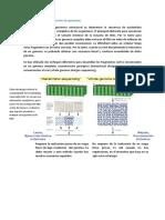 Estrategias de Secuenciación de Genomas
