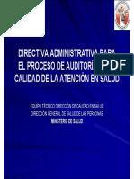 Directiva Administrativa Para Proceso Auditoria Caso