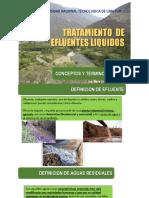 INTRODUCCIÓN AL TRATAMIENTO DE EFLUENTES LIQUIDOS