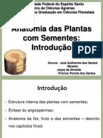 Anatomia Das Plantas Com Sementes - Introdução