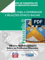 Tema 9 Educacao Para Diversidade e Relacoes Etnico Raciais