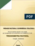 Piedade Pastoral e Experiência Teológica - Pr. Joao Arantes .ppt