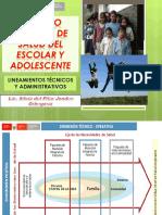 Lineamientos Tecnicos Administrativos Salud Escolar Adolescente Geresa (1)