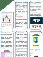 Triptico - PRONOMBRES.doc