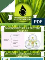 Dimensiones de la sustentabilidad.pptx