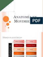 Anatomía en Movimiento