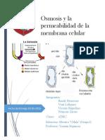 Osmosis y Pearmibilidad de La Membrana Celular