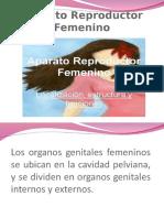 Aparato Reproductor Femenino EMILIA