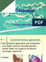 15754286-Cestodos.ppt
