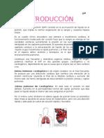 86503509-Proceso-Enfermero-Edema-Agudo-de-Pulmon.docx